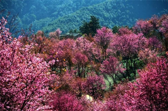 岁月蹁跹,山水入梦,脚步到达的,都将成就生活的诗篇