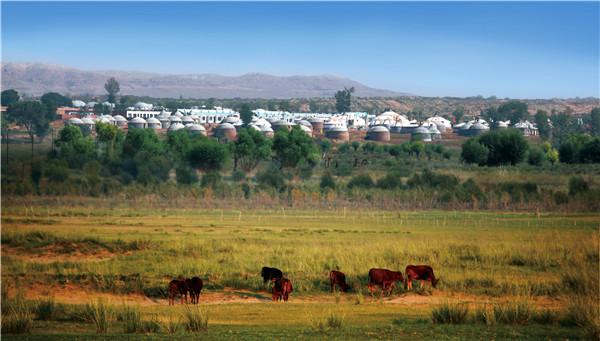 蓝天下的牛羊在苏泊罕大草原宛若一幅国画.jpg