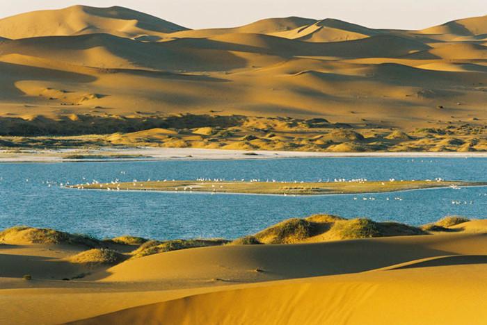中国沙漠面积变化_未来50年新疆沙漠绿化_中国的沙漠面积