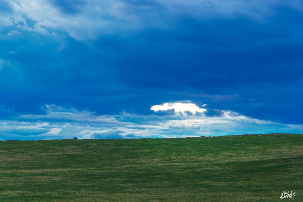 6月内蒙古草原风采