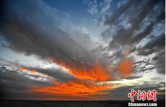 图为库布其国家沙漠公园。鄂尔多斯宣传部供图