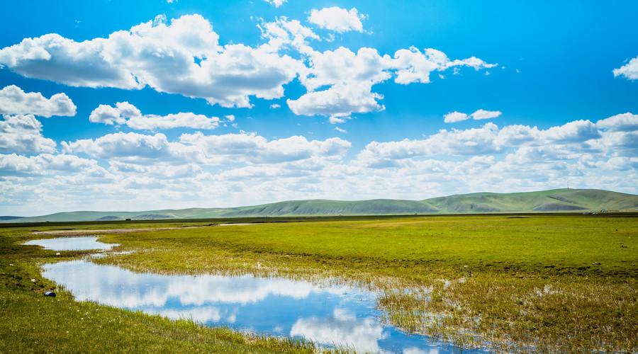 草原和沙漠