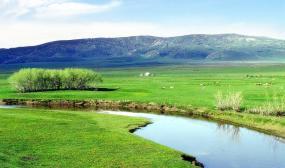 如果灵魂无处安放,来苏泊罕大草原,这里有远方